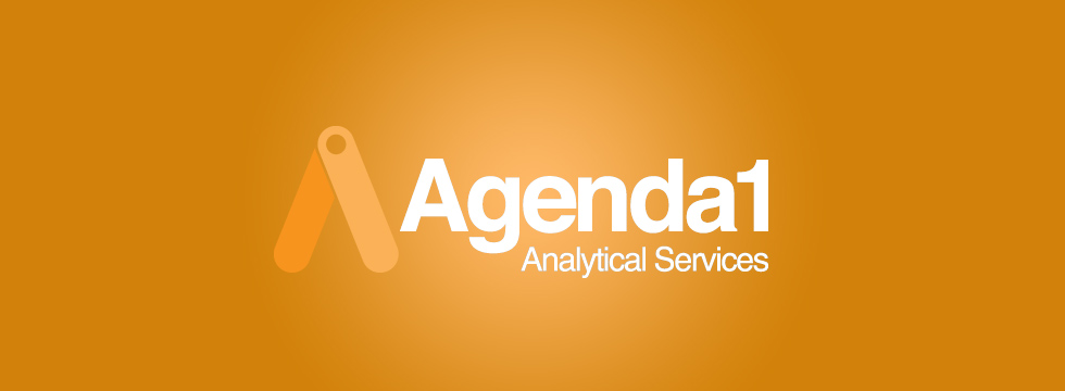 Dulay Seymour to synthesise a digital solution for Agenda 1